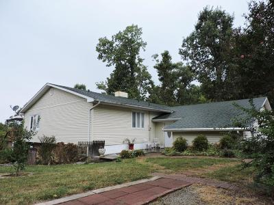 Single Family Home For Sale: 213 Clifty Creek Dr