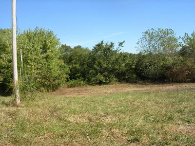 Johnson County Residential Lots & Land For Sale: 2150 Goreville Road