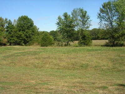 Vienna Residential Lots & Land For Sale: 28, 29, 30 Illini