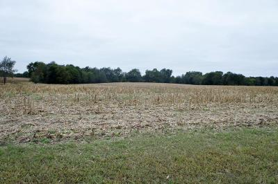 Massac County Residential Lots & Land Active Contingent: Devers Road