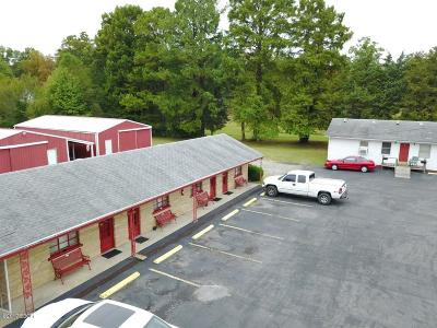 Johnston City Commercial For Sale: 17303 State Rt 37