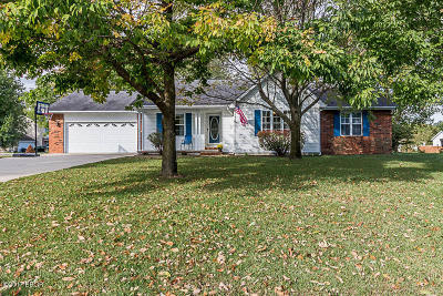 Herrin Single Family Home For Sale: 3029 Hickory Ridge Drive