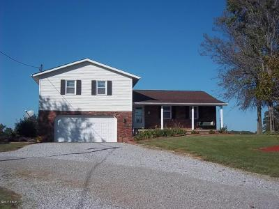Creal Springs Single Family Home For Sale: 302 W Boundary Road