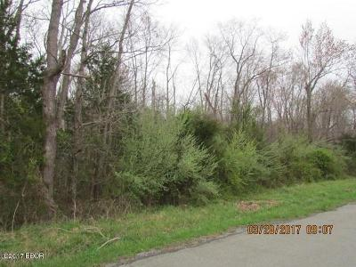 Williamson County Residential Lots & Land For Sale: Dillingham Road