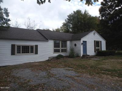 Goreville Single Family Home For Sale: 1119 S Fly