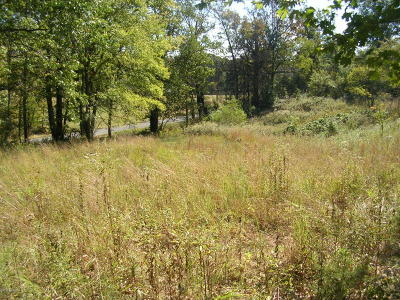 Vienna Residential Lots & Land Active Contingent: Dutchman Lake Rd