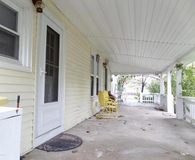 Goreville Single Family Home For Sale: 420 S Broadway