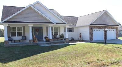Herrin Single Family Home For Sale: 304 Eric Dr.