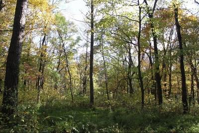 Murphysboro Residential Lots & Land For Sale: River Rock Road