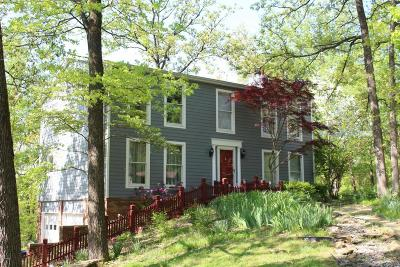 Carbondale Single Family Home For Sale: 182 Upper Brush Hill Road