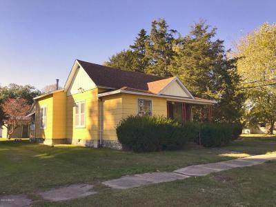Herrin Single Family Home For Sale: 321 N 10th