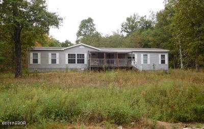 Goreville Single Family Home For Sale: 85 Moss Creek