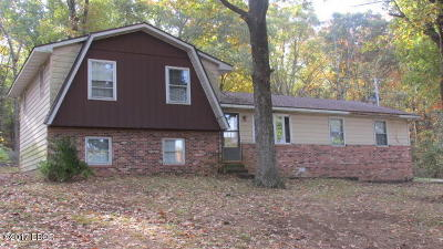 Johnson County Single Family Home For Sale: 16380 Us Hwy 45 N