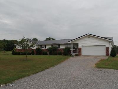 Goreville Single Family Home For Sale: 615 Route 37