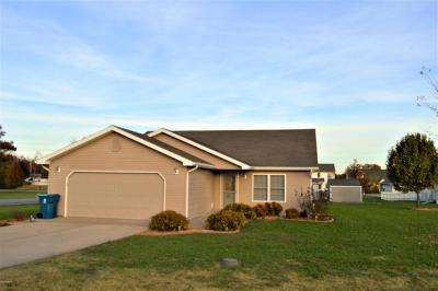 Carterville Single Family Home For Sale: 11292 Nora