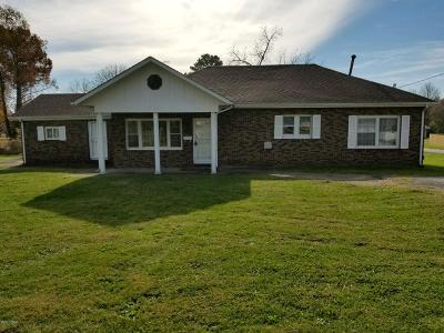 Johnston City Single Family Home For Sale: 907 Noah Avenue