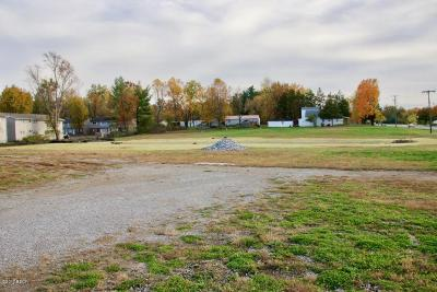Jackson County Residential Lots & Land For Sale: 101 S Giant City Road