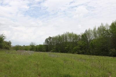 Jackson County Residential Lots & Land For Sale: Pump House Road