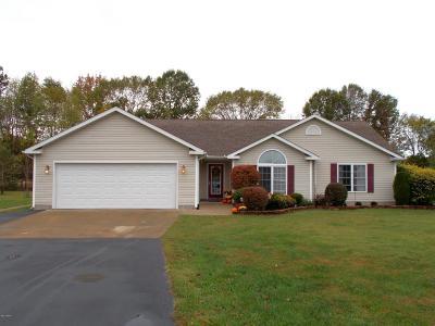 Carterville Single Family Home Active Contingent: 1504 McCowen Lane