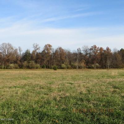 Johnston City Residential Lots & Land For Sale: Poor Farm Road