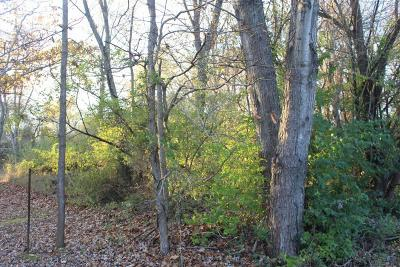 Carterville Residential Lots & Land For Sale: Olive Street