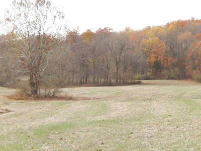 Cobden Residential Lots & Land For Sale: 505 Toledo Cemetery Road