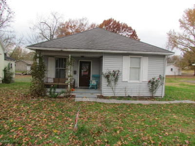 Johnston City Single Family Home For Sale: 1108 Newton Avenue