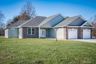 Carterville Single Family Home Active Contingent: 105 Excalibur Drive