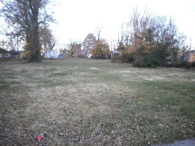 Harrisburg Residential Lots & Land For Sale: 1121 S Hobson Street