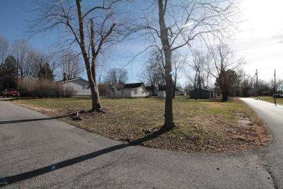 Residential Lots & Land For Sale: 1201 S Madison Street