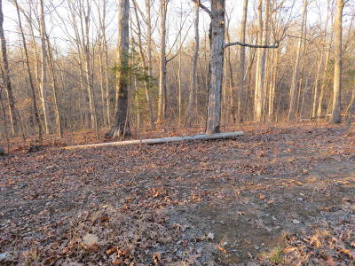 Creal Springs Residential Lots & Land For Sale: Wagon Creek Loop #14-16
