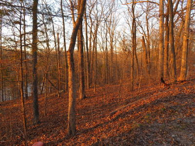 Creal Springs Residential Lots & Land For Sale: Wagon Creek Loop #12&13