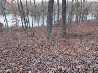 Creal Springs Residential Lots & Land For Sale: Wagon Creek Loop #8