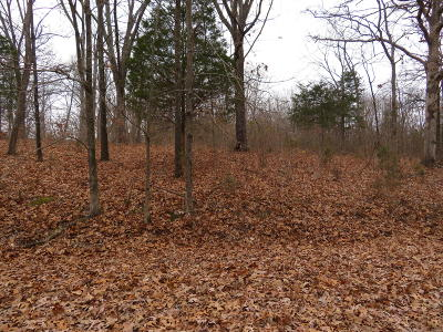 Creal Springs Residential Lots & Land For Sale: Wagon Creek Loop #34&35