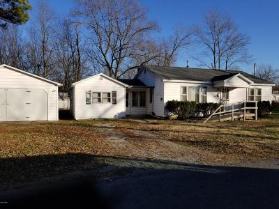Murphysboro IL Single Family Home For Sale: $39,900