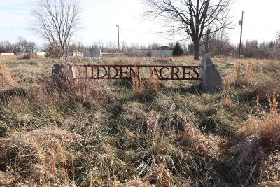Massac County Commercial For Sale: 11 Hidden Acres Road