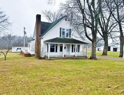 Massac County Single Family Home For Sale: 7280 Riepe Ridge Road