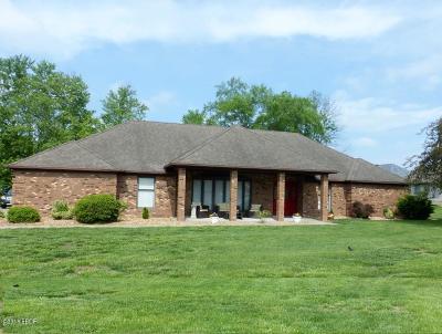 Williamson County Single Family Home For Sale: 1700 S Dallas