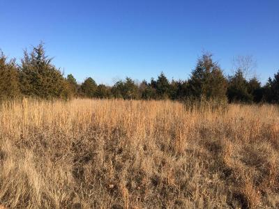 Marion Residential Lots & Land For Sale: Skyline Drive