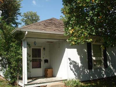 Herrin Single Family Home For Sale: 319 W Herrin Road