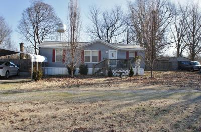 Massac County Single Family Home For Sale: 414 Joppa N Avenue
