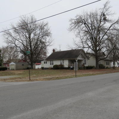 Herrin Single Family Home For Sale: 1004 S 13th Street