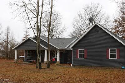 Carterville Single Family Home Active Contingent: 401 Blake Drive