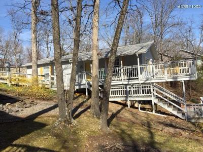 Goreville Single Family Home For Sale: 385 S Lakeshore Drive