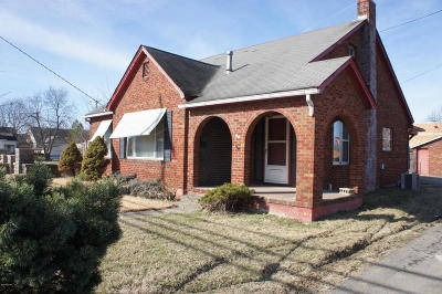 Metropolis Single Family Home For Sale: 909 Ferry Street