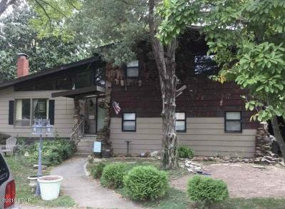 Carbondale Single Family Home For Sale: 611 Skyline