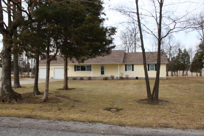 Marion IL Single Family Home For Sale: $290,000