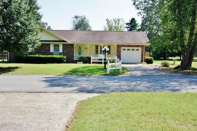 Massac County Single Family Home For Sale: 206 Baker Drive