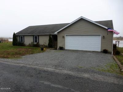 Creal Springs, Goreville, Marion Single Family Home For Sale: 21669 Enyenhausen Road