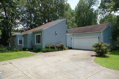 Massac County Single Family Home For Sale: 4 Hickory Lane